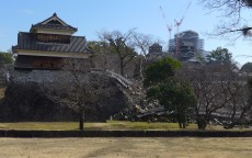 「B.LEAGUE ALL STAR GAME 2018 Kumamoto」の翌日は、熊本城を見学しました。