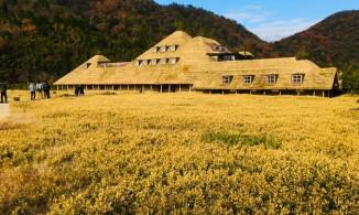 滋賀の近江八幡を訪ねました。